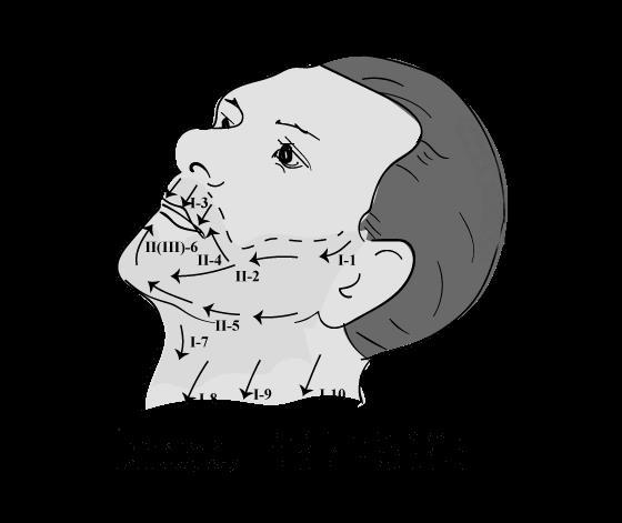 Обработка левой части лица