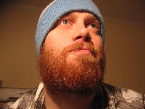 мужчины с рыжей бородой