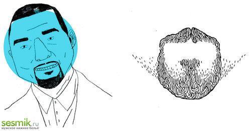 Круглый тип головы и пример бороды
