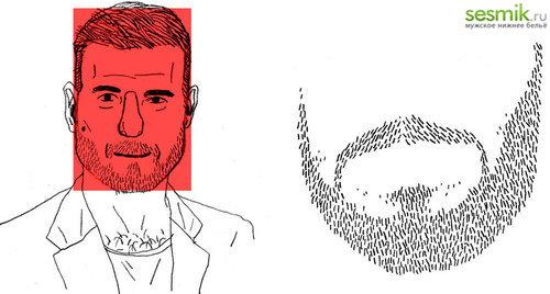 Квадратный тип головы и пример правильной бороды