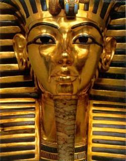 борода фараонов