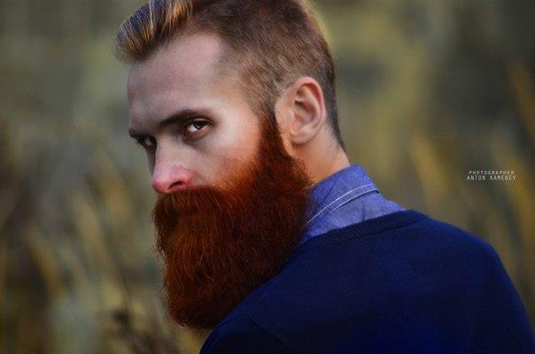 Черная борода и русые волосы