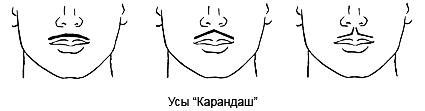 """Усы """"Карандаш"""""""