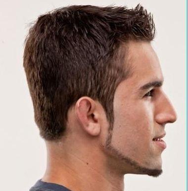 Чинстрап - борода опоясывающая лицо