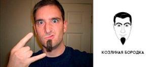Козлиная бородка фото