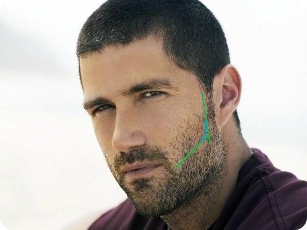 Формирование границ бороды