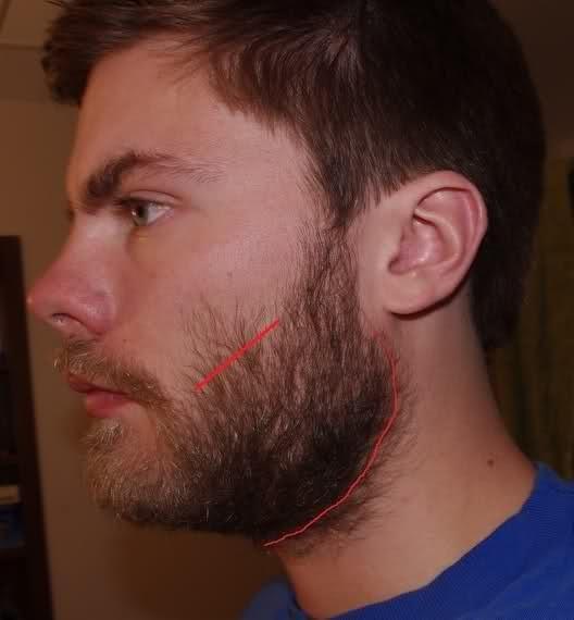 Формирование границ бороды - Обложка