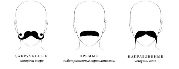 Изображение 83. Сами с усами: усачи об усах.. Изображение № 32.