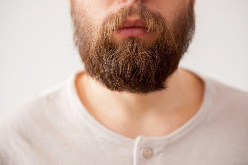 Модные бороды 2016
