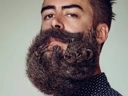 приснилась борода сонник