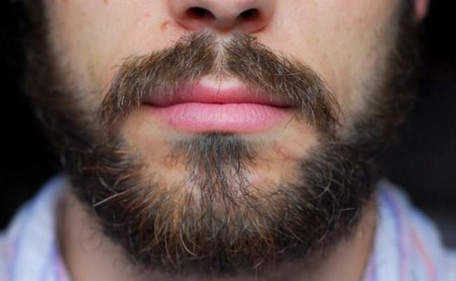 Короткая борода