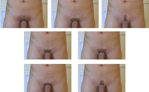 Мужские интимные стрижки