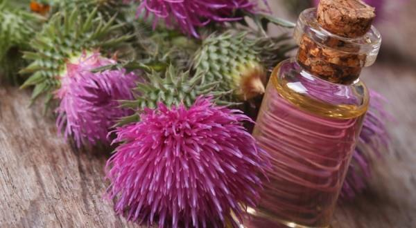 Целебное масло отлично подойдет для укрепления и усиления роста волос
