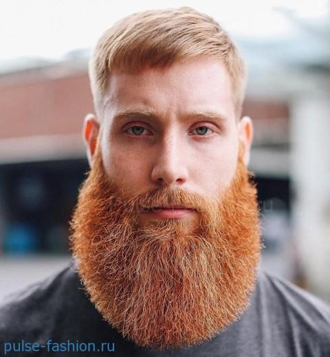 Модная мужская борода для рыжеволосых мужчин 2017