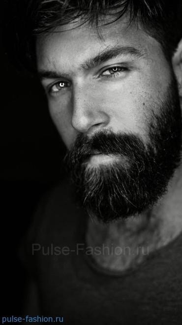 мужская борода 2017 Модная мужская борода 2017-2018